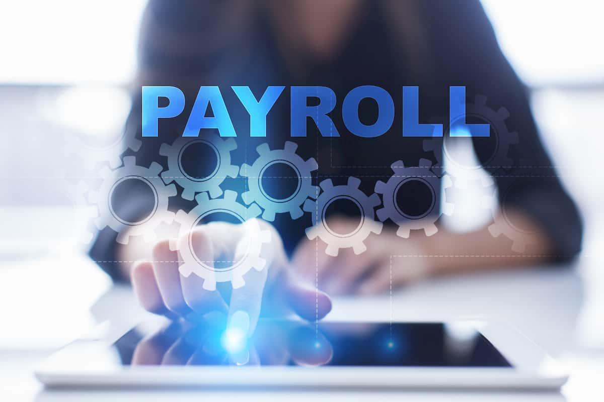 payroll options